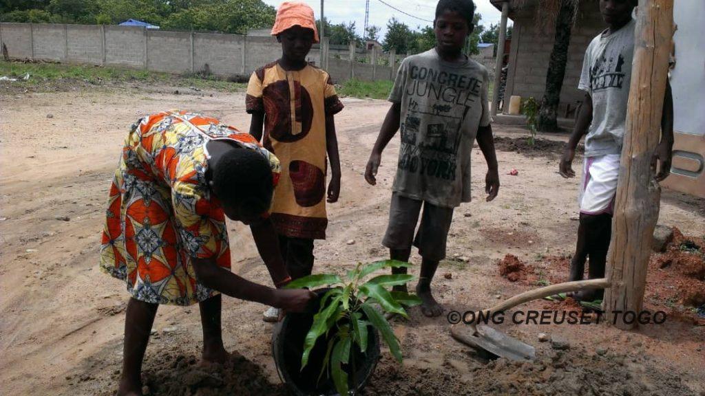 Célébration de la Journée nationale de l'arbre à la ferme agropastorale de Creuset Togo