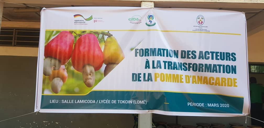 Le GIZ-Togo forme les agro-entrepreneurs à la valorisation de la pomme d'anacarde.