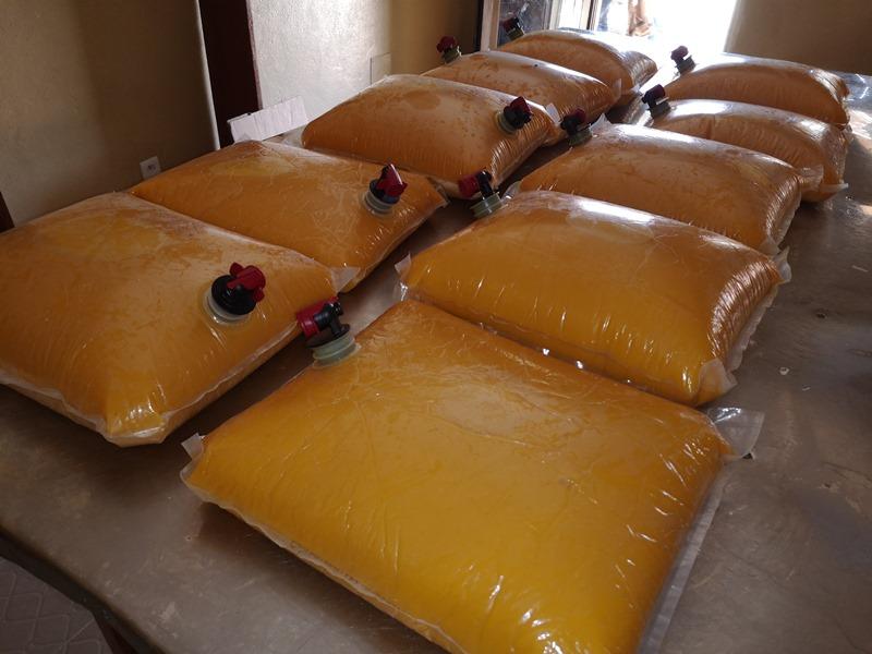 Transformation des mangues en jus de mangue avec l'ong Creuset Togo